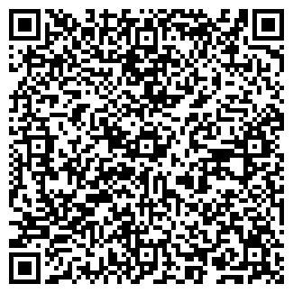 QR-код с контактной информацией организации ИП Страленя