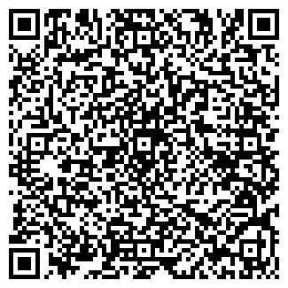 QR-код с контактной информацией организации Субъект предпринимательской деятельности Elitsan