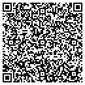 QR-код с контактной информацией организации НИЛ СКОиФ