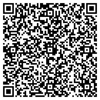 QR-код с контактной информацией организации Megavolt pro