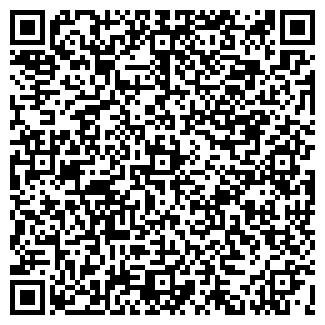 QR-код с контактной информацией организации Dvorik