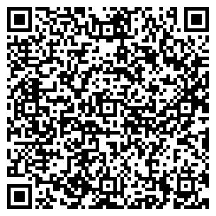 QR-код с контактной информацией организации VIP Мастер, ЧП