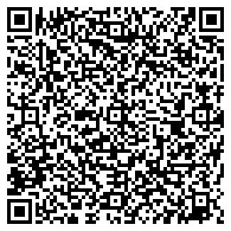 QR-код с контактной информацией организации Высолы, ЧП