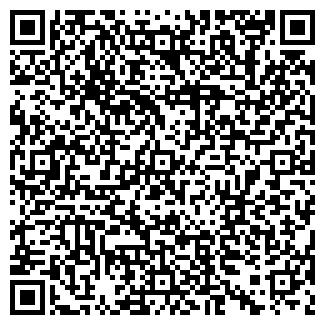 QR-код с контактной информацией организации Домстрой, ИП