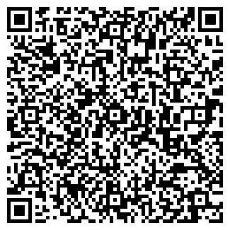 QR-код с контактной информацией организации Stroyka, ИП