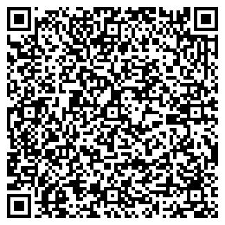 QR-код с контактной информацией организации ИП Нурлан