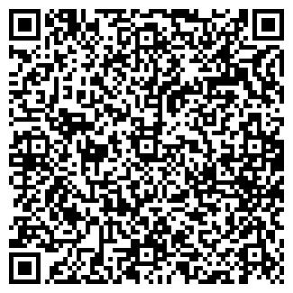 QR-код с контактной информацией организации ИП Черемисин