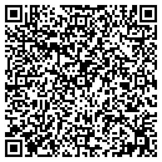 QR-код с контактной информацией организации Субъект предпринимательской деятельности T-Line