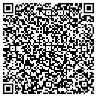 QR-код с контактной информацией организации «holodok»