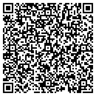 QR-код с контактной информацией организации PIT-STOP