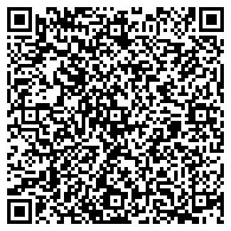 QR-код с контактной информацией организации Древо