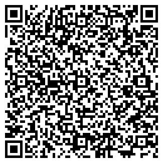 QR-код с контактной информацией организации Ками-2010, ТОО