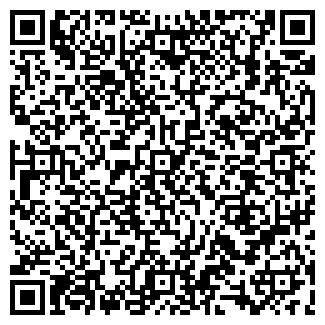 QR-код с контактной информацией организации Бани кz, ИП