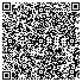 QR-код с контактной информацией организации Vlad(Влад), ИП