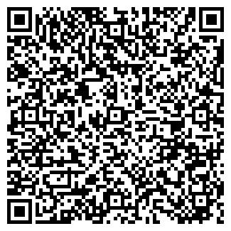 """QR-код с контактной информацией организации ип """"алиев"""""""