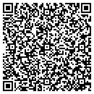 """QR-код с контактной информацией организации ТОО """"Ziza"""""""