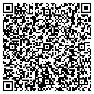 """QR-код с контактной информацией организации ТОО """"Скади"""""""