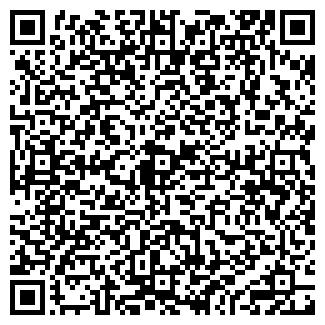 QR-код с контактной информацией организации ИП Балыш