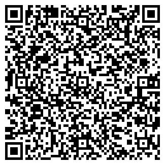 QR-код с контактной информацией организации Скважина, ЧП