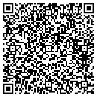 QR-код с контактной информацией организации Alko A, ТОО