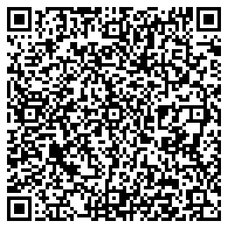QR-код с контактной информацией организации ИП АМИР