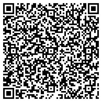 """QR-код с контактной информацией организации ЧП """"Блызнюк"""""""