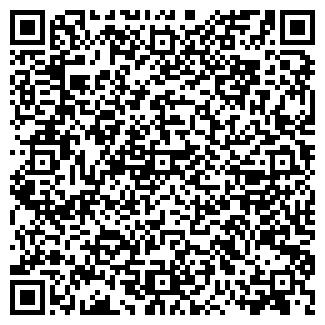 QR-код с контактной информацией организации Mr_Igrik