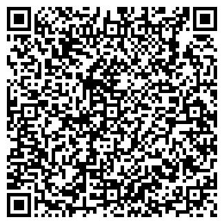 QR-код с контактной информацией организации Електро, ЧП