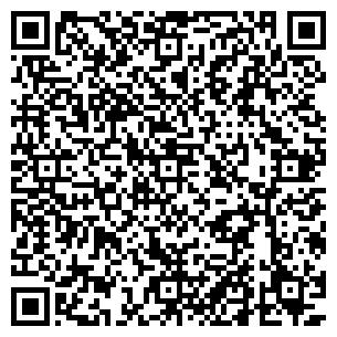 QR-код с контактной информацией организации Схема, ЧП