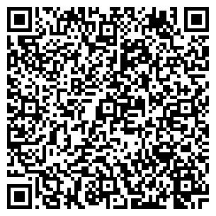 QR-код с контактной информацией организации Термико, ЧП