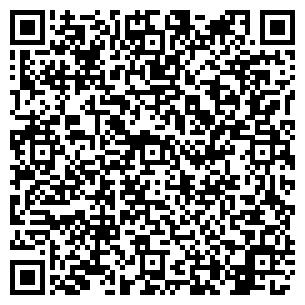 QR-код с контактной информацией организации Сиэстел, ООО