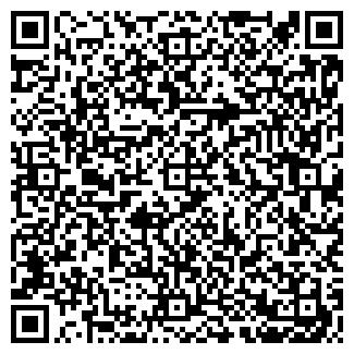 QR-код с контактной информацией организации Темиз, ЧП