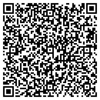 QR-код с контактной информацией организации Электроэлан, ЧП