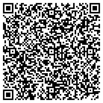 QR-код с контактной информацией организации DSI (ДиЭсАй), ТОО