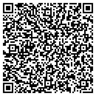 QR-код с контактной информацией организации РИС, ТОО