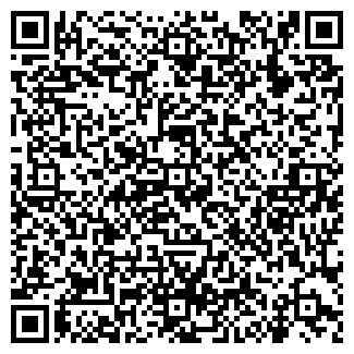 QR-код с контактной информацией организации Киндер-шоп, ЧП