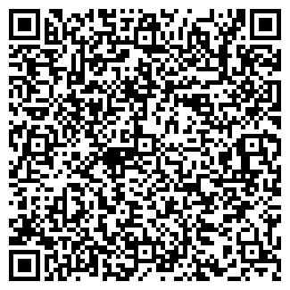 QR-код с контактной информацией организации BabyKiss, ЧП
