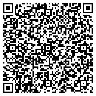 QR-код с контактной информацией организации Малышок, ЧП