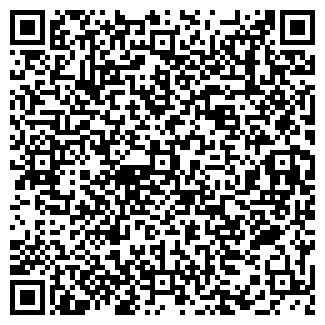 QR-код с контактной информацией организации Бабайка, ООО