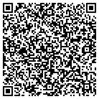 QR-код с контактной информацией организации Baby Hit, ЧП