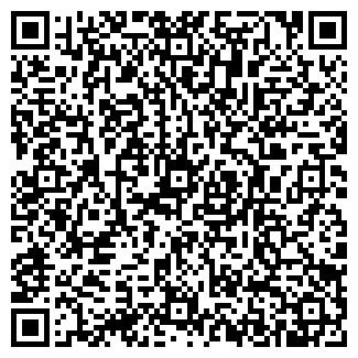 QR-код с контактной информацией организации Малютка, ЧП