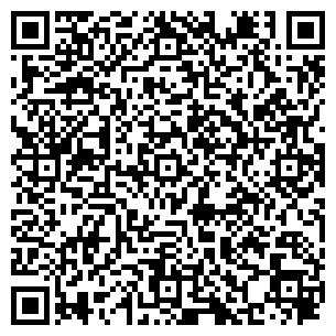 QR-код с контактной информацией организации Нью той, ЧП (NewToy)
