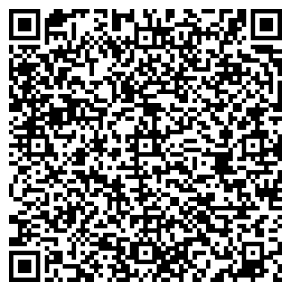 QR-код с контактной информацией организации Триумф, ЧП
