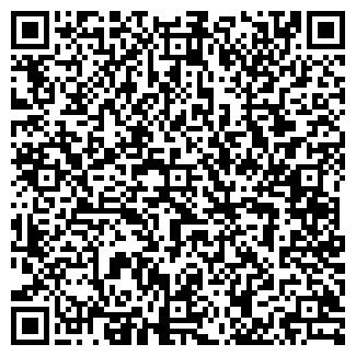 QR-код с контактной информацией организации Сетевик, ООО