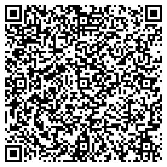 QR-код с контактной информацией организации Everest, ООО