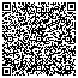QR-код с контактной информацией организации Newton, ЧП
