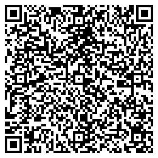 QR-код с контактной информацией организации Сечко, ИП
