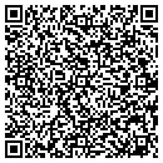 QR-код с контактной информацией организации Билоус, ЧП