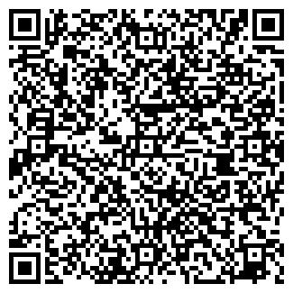 QR-код с контактной информацией организации Норцес, ИП