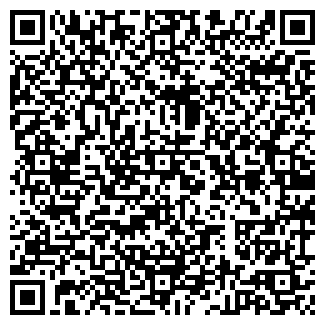 QR-код с контактной информацией организации Великорода, СПД